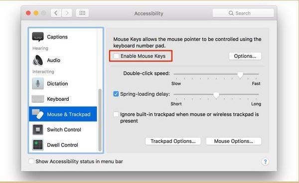 Kiểm tra chế độ Mouse Keys